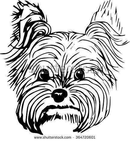 432x470 Yorkshire Terrier Dog Vector Illustration. Hand Drawn Small Dog