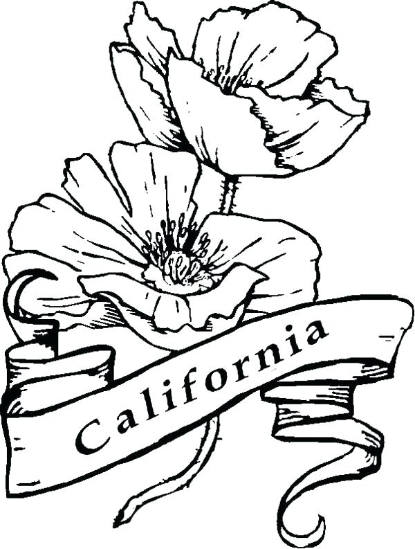 600x793 California State Flag Coloring Page Printable Drawings