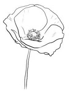 224x300 The Best California Poppy Drawing Ideas On Flower