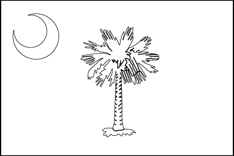 1440x960 South Carolina State Flag