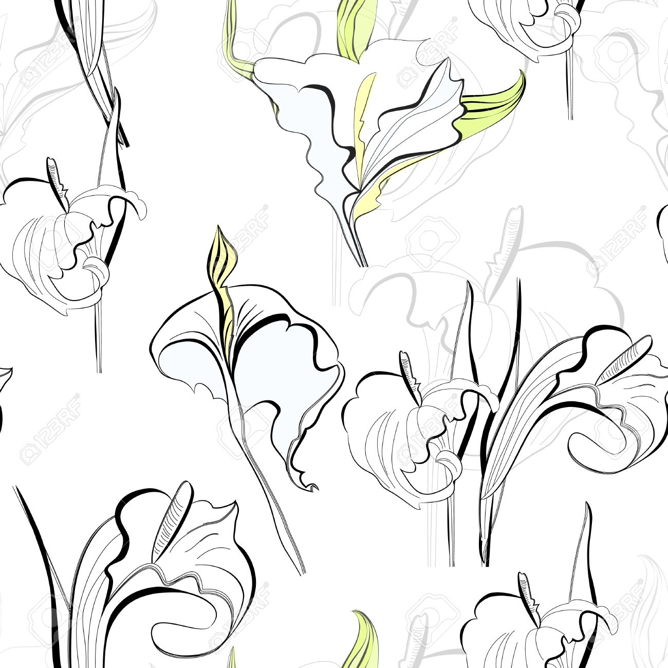 1300x1300 Calla Lily Flower Drawing. Calla Lilies Simple Drawing Vector