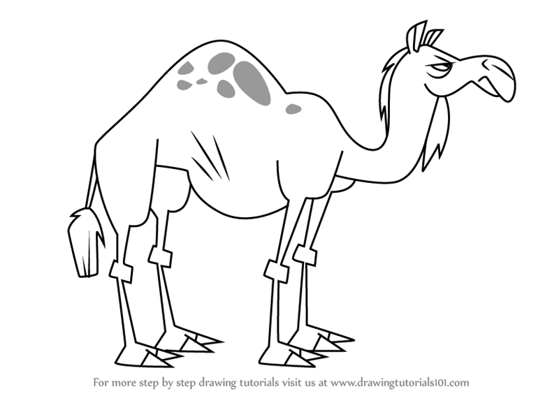 800x567 Learn How To Draw Camel From Total Drama (Total Drama) Step By