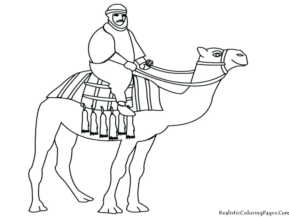940x705 Best Of Camel Coloring Page Images Camel Coloring Pages C