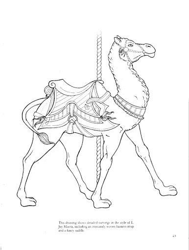 386x512 102 Best Camels Images On Camels, Camel Animal And Camel
