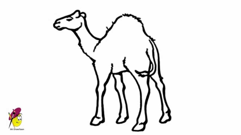 1024x576 How To Draw A Camel Fpencil How To Draw Camel For Kids Step Step