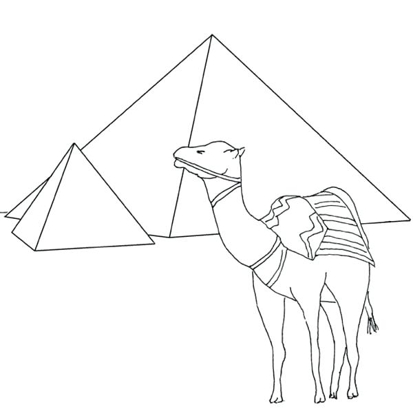 600x594 Best Of Camel Coloring Page Images Pyramid And Camel Coloring Page