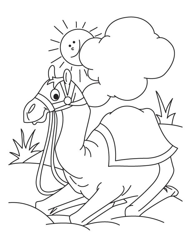 612x792 Camel Sitting In The Desert Coloring Page Download Free Camel