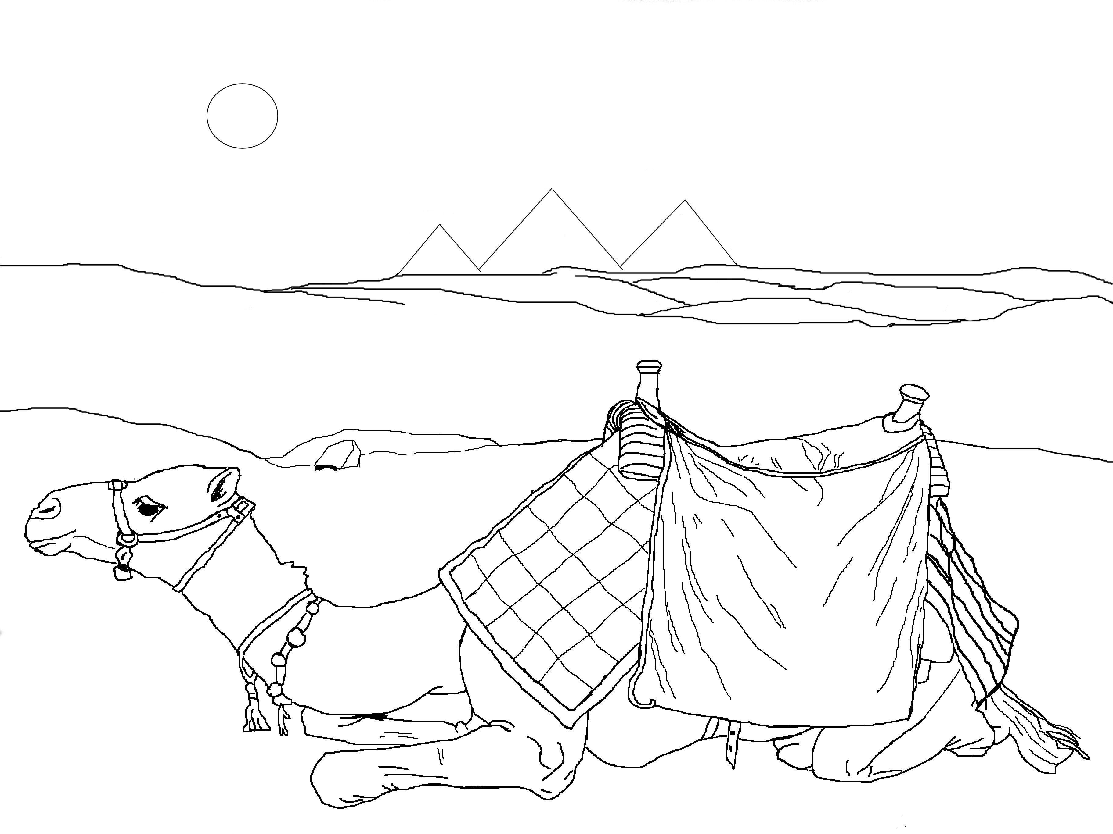 3648x2736 Middle East Desert Scene Coloring Pages Manna In The Desert