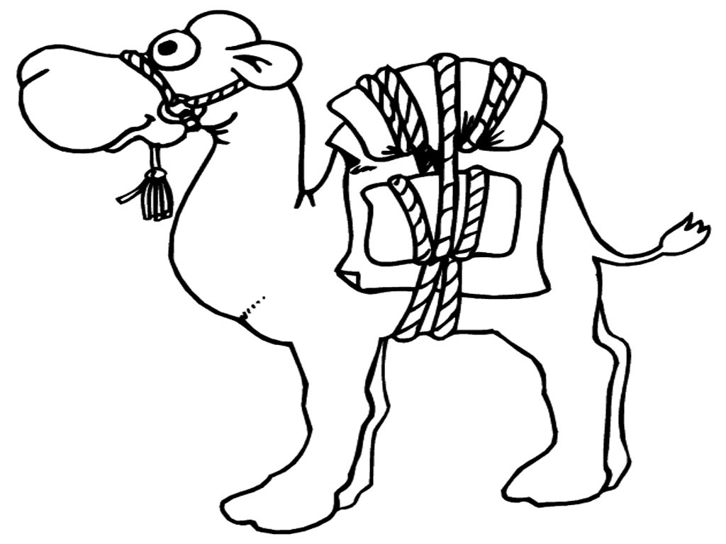 1024x768 Drawn Camel Coloring Page