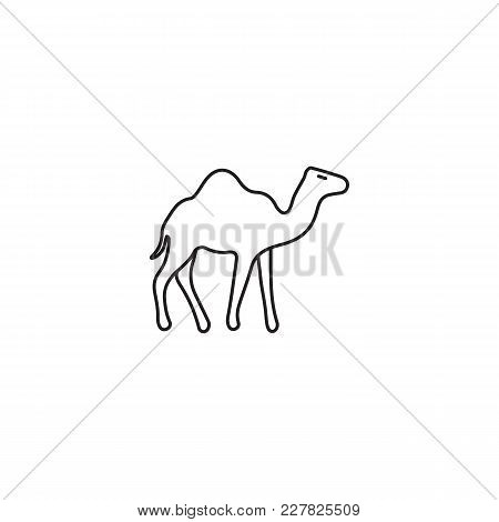 450x470 Egyptian Camel Icon Line Style. Vector Amp Photo Bigstock