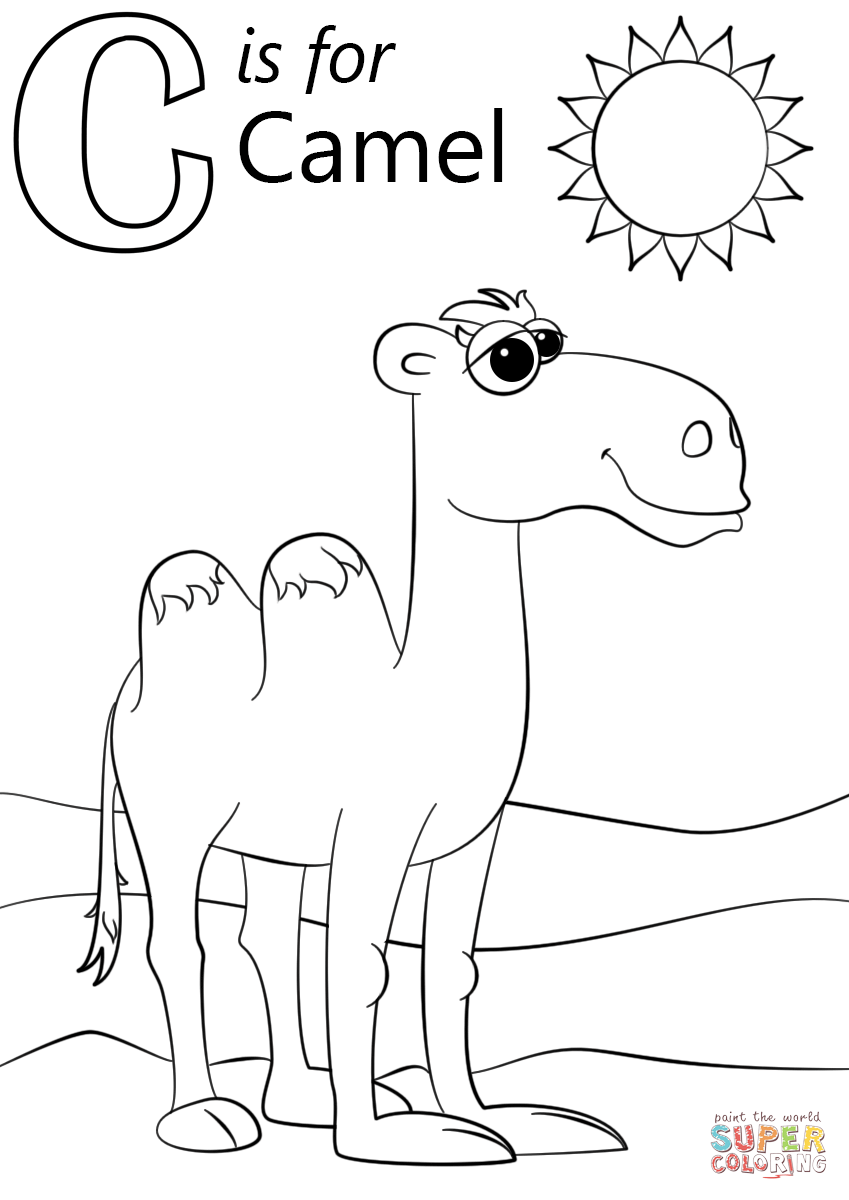 Camel Line Drawing at GetDrawings | Free download