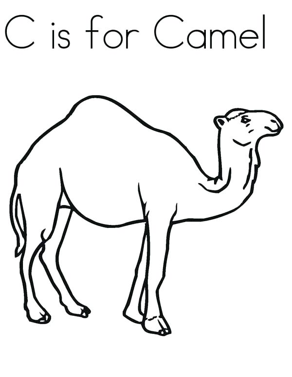 600x776 On Line Coloring Pages Enchanting Camel Coloring Page On Coloring