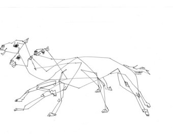340x270 Resting Camels Arabic Desert Line Drawing Middle East