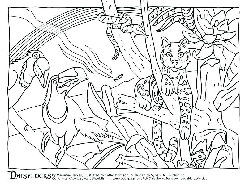 792x612 Camouflage Coloring Pages Endangered Animals Coloring Pages