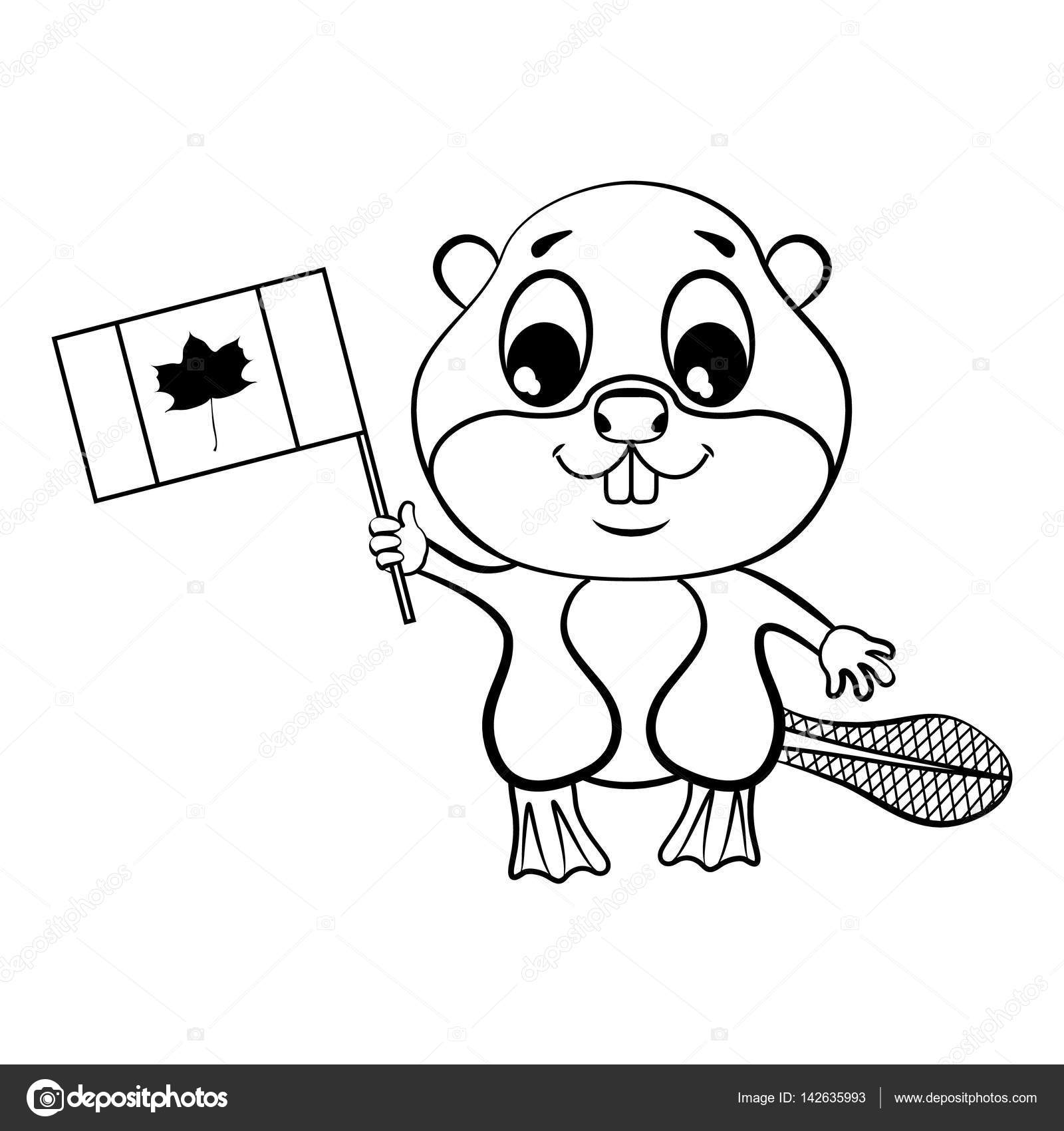 1600x1700 Beaver With Canadian Flag. Coloring Stock Vector Elfhame