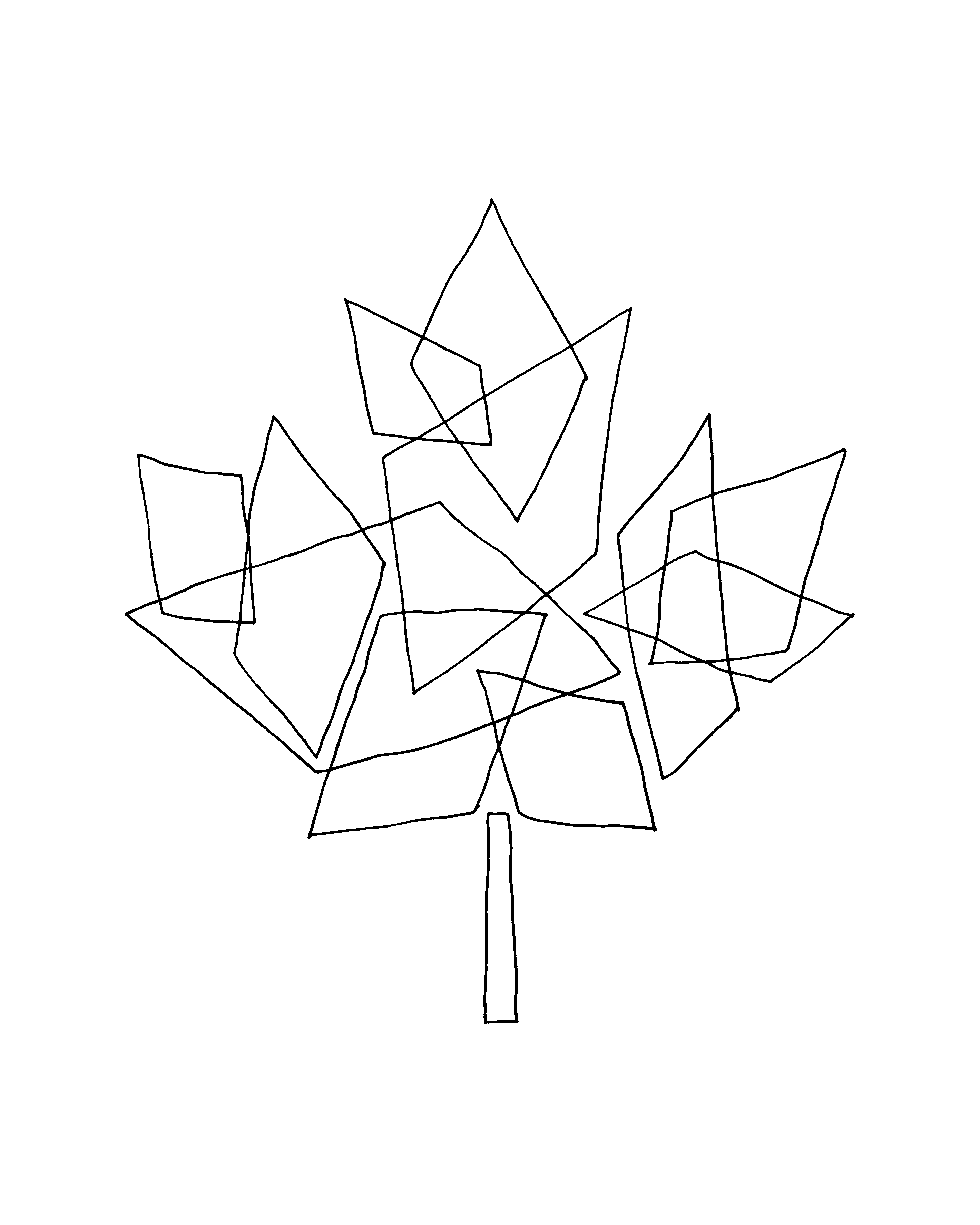 4800x6000 10000 Pages Canadian Maple Leaf Colouring Page 5870
