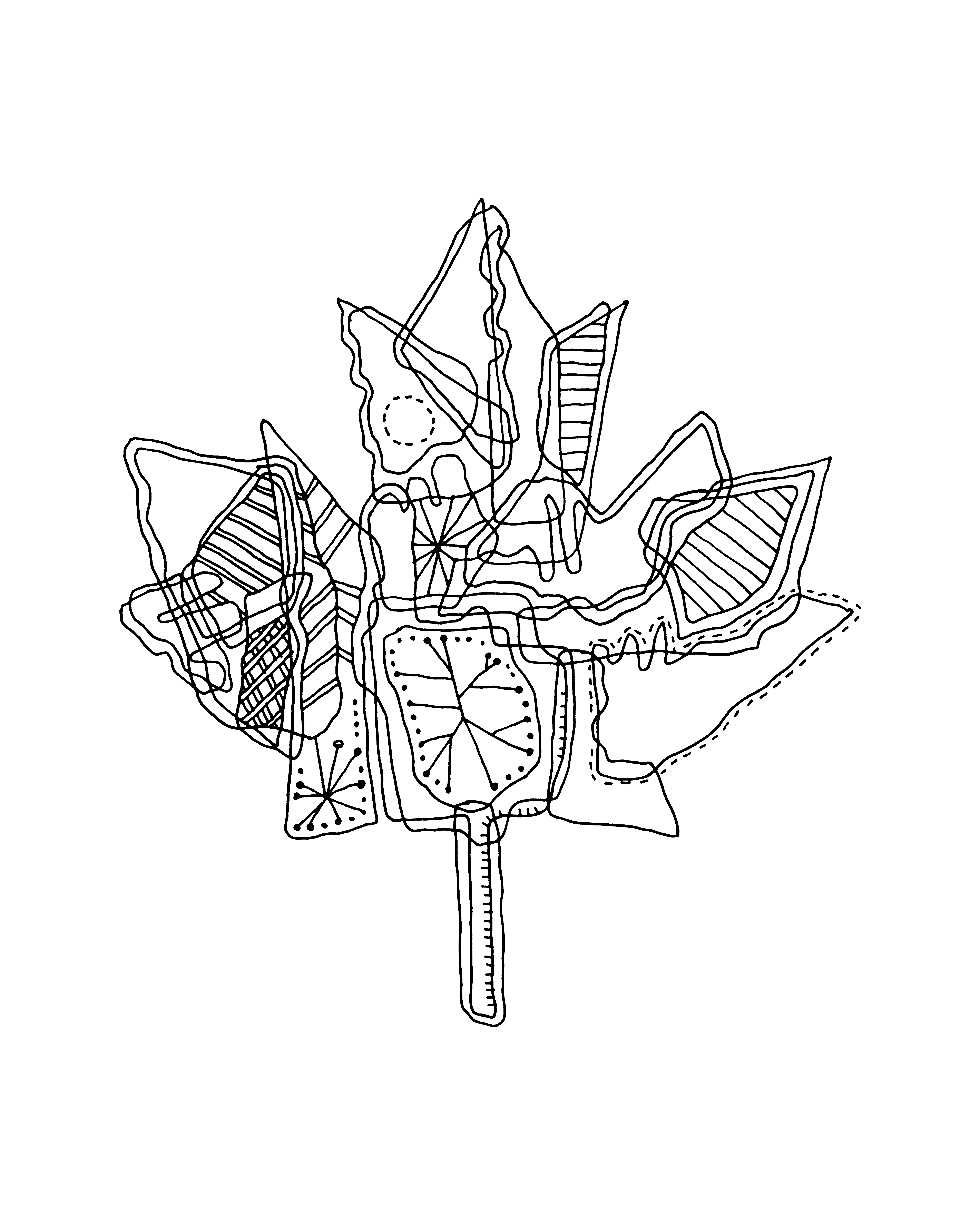 Canadian Drawing