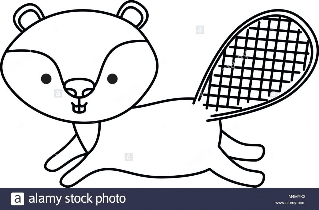 1043x685 Two Beavers Holding Canada Flag On Day Coloring Pages Flowers