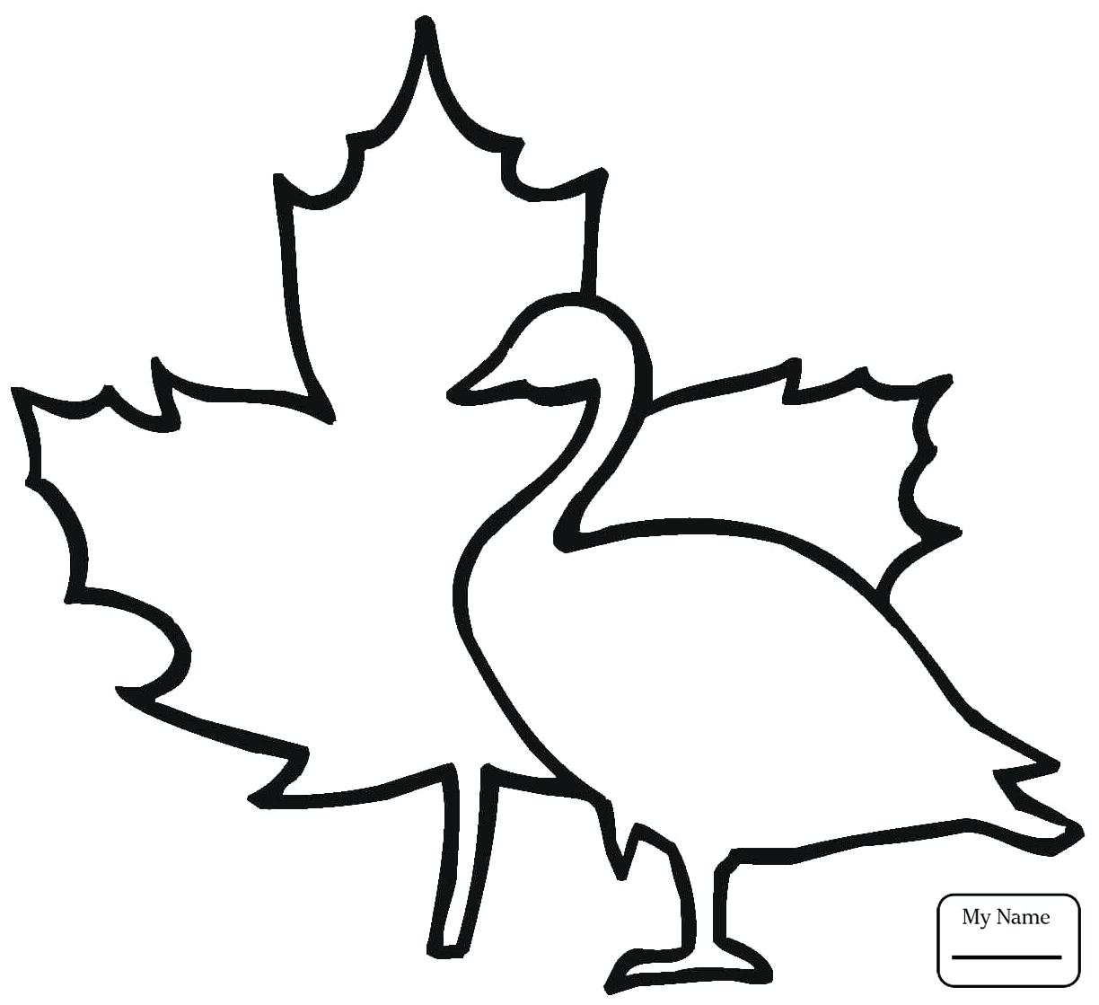 1224x1119 Coloring Canada Flag Coloring Map Printable Blank Royalty Free