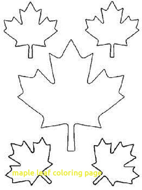 471x630 Maple Leaf Coloring Page Coloringpageforkids.co