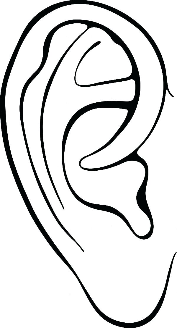 600x1109 Coloring Page Of Corn Ear Coloring Page Body Parts Ear Colouring
