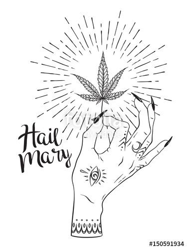 375x500 Marijuana Leaf In Female Hand Isolated Over White Background