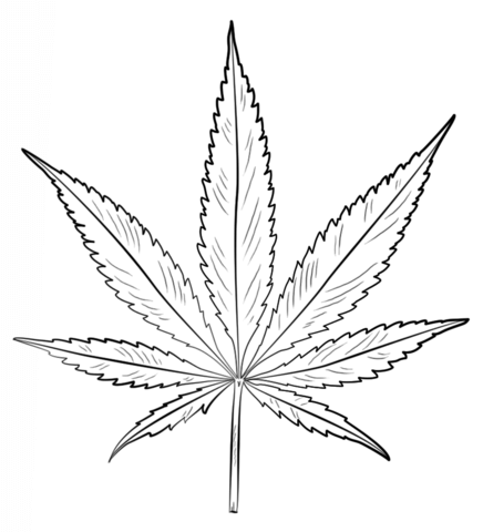 436x480 Pot Leaf Coloring Page Free Printable Coloring Pages