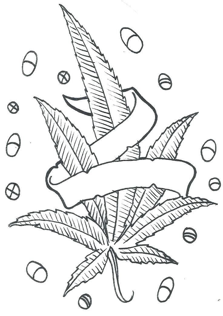 736x1040 Pot Leaf Coloring Pages