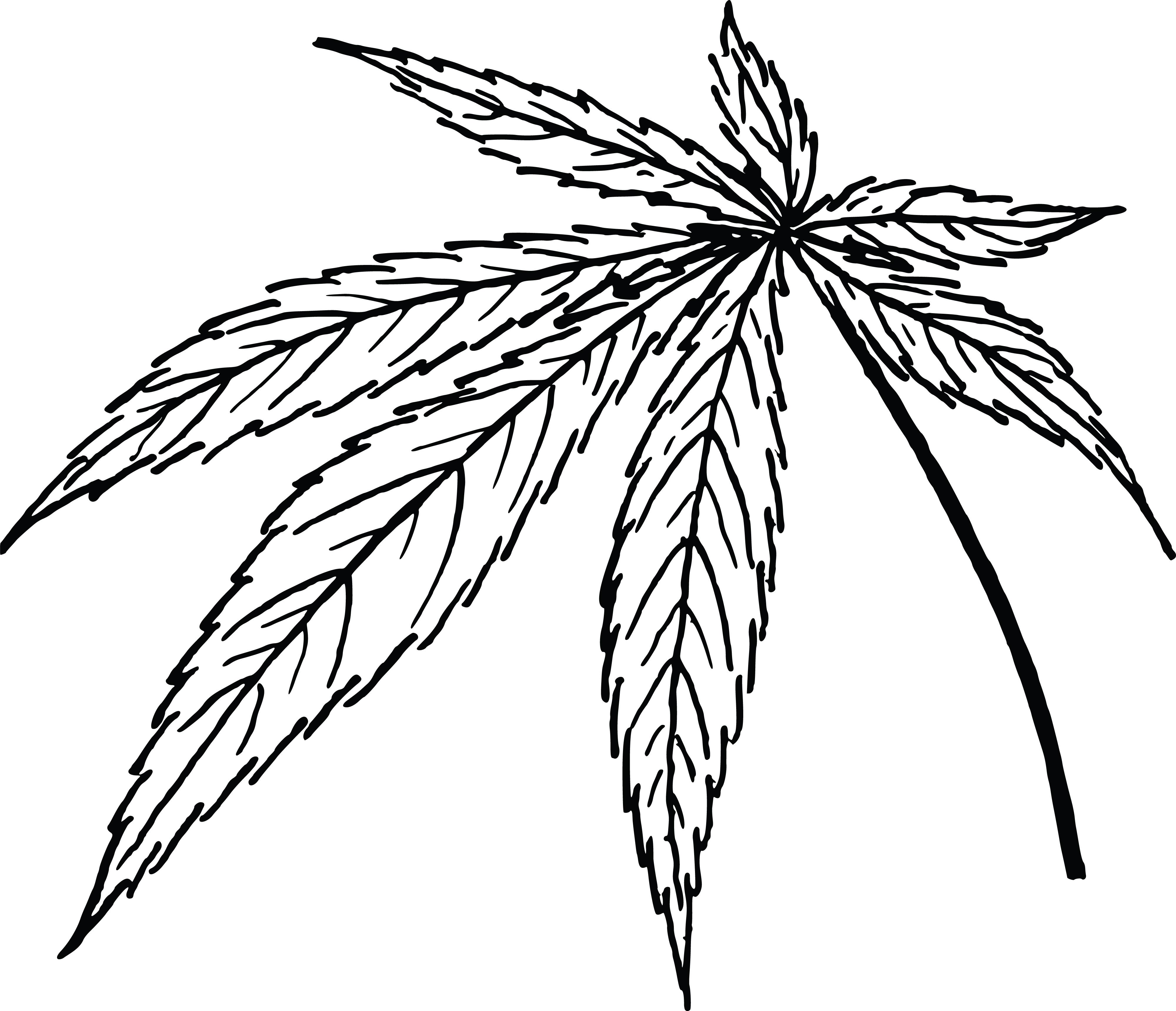 4000x3438 Clipart Of A Cannabis Leaf