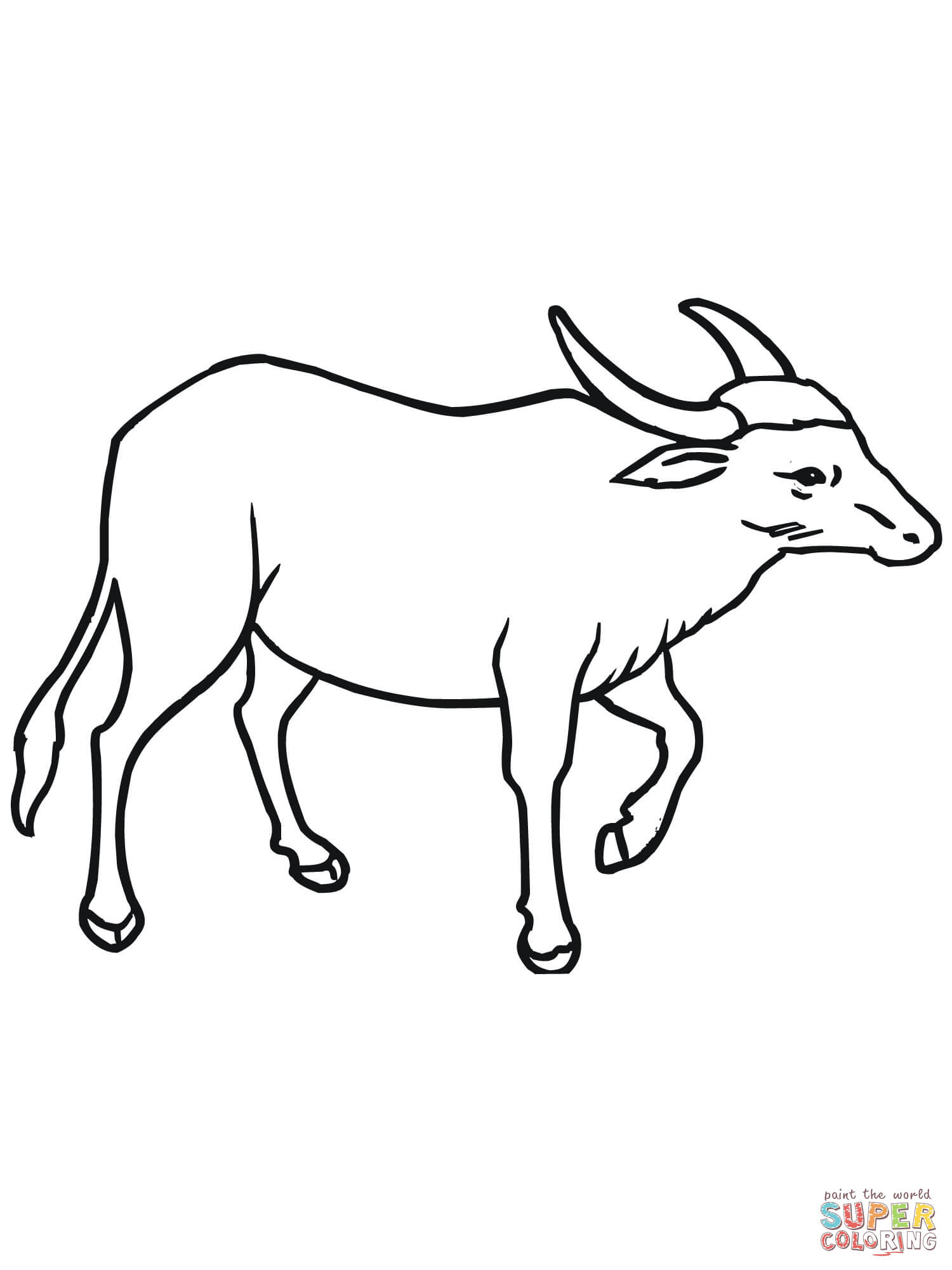 1500x2000 Buffalo Coloring Pages Free Coloring Pages