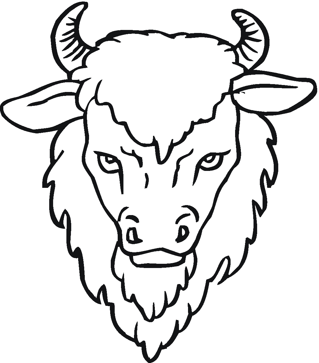 1057x1200 Drawing Of A Buffalo African Buffalo Images Stock Pictures