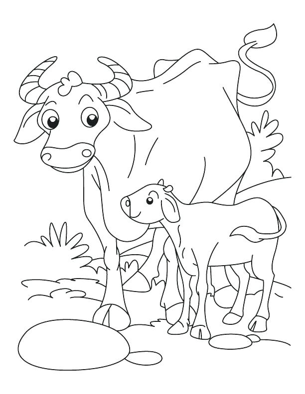 612x792 Buffalo Coloring Pages Synthesis.site