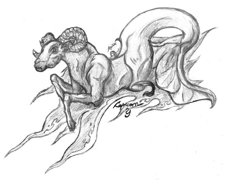 800x631 Capricorn By Ornate Serpent