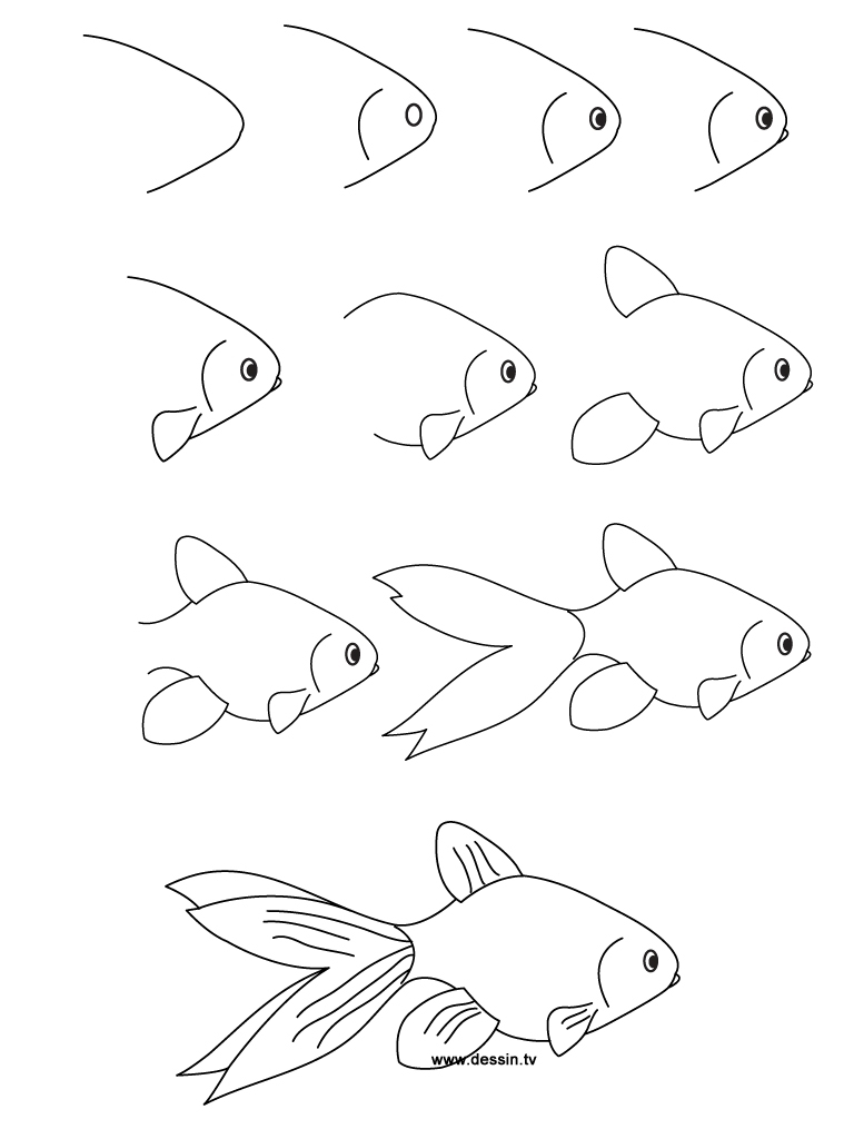 768x1024 How To Draw A Fish Step By Step Formula 1 Car Learn To Draw Steps