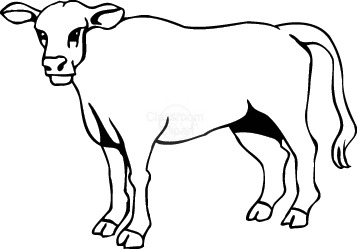 357x249 Cow Drawing Clip Art Cute Cow Drawing