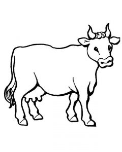 240x300 Cow Drawings For Kids Tags Cow Drawing For Kids Doves Coloring