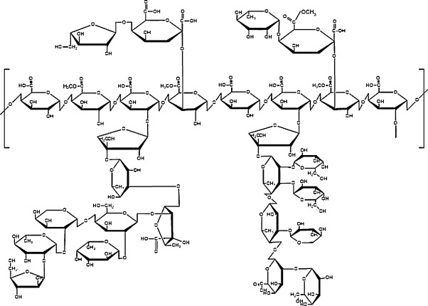 602x430 Enzyme Based Processing Of Soybean Carbohydrate Recent