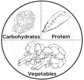 294x281 Image Result For Balanced Diet Plate Model Line Drawing Kids