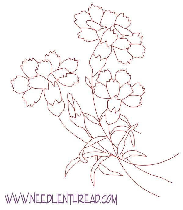 Carnation Flowers Drawing