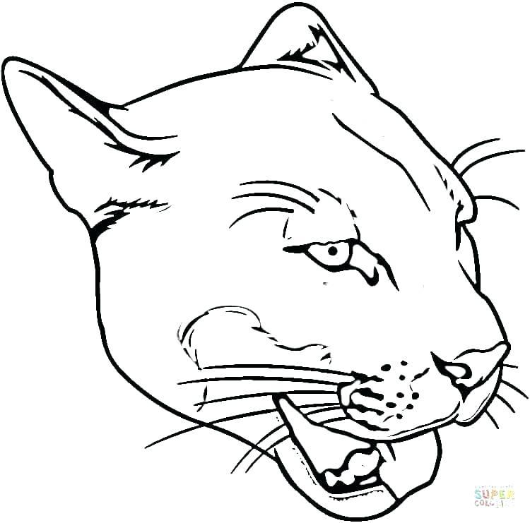 750x741 Beautiful Carolina Panthers Coloring Pages Crayola Photo