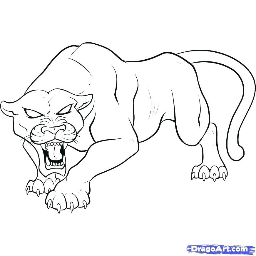 871x871 Carolina Panthers Coloring Pages