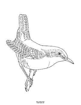 270x350 South Carolina State Bird Notebooking Set (Carolina Wren) Tpt
