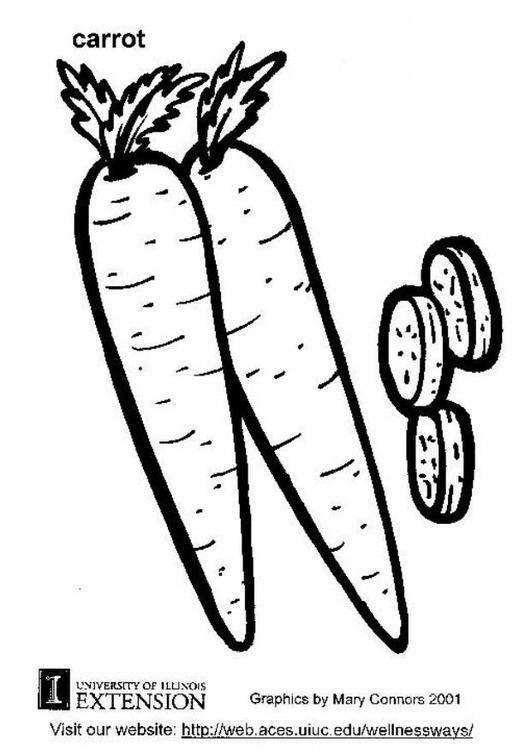 531x750 Coloring Page Carrot