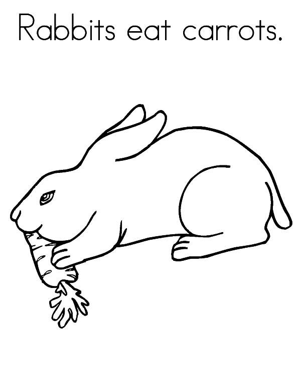 600x776 Rabbit Eat Carrot Coloring Pages Best Place To Color