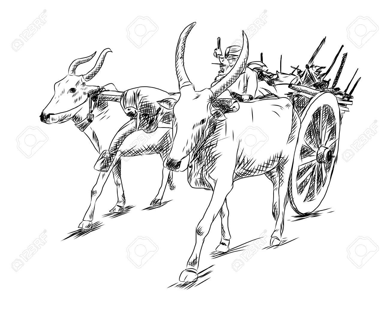 1300x1037 Hand Drawn Sketch Of Bullock Cart In Vector Illustration. Royalty
