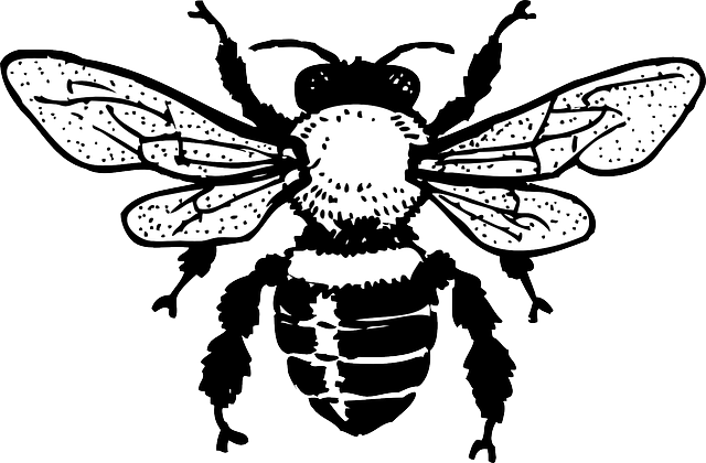 640x420 Honey, Sketch, Silhouette, Cartoon, Bee, Wings, Graphic