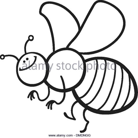 542x540 Cartoon Bee Black And White Stock Photos Amp Images