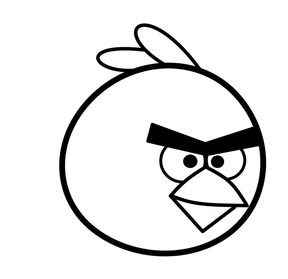 1004x972 Cartoon Bird Drawing Angry Birds Face Clipart