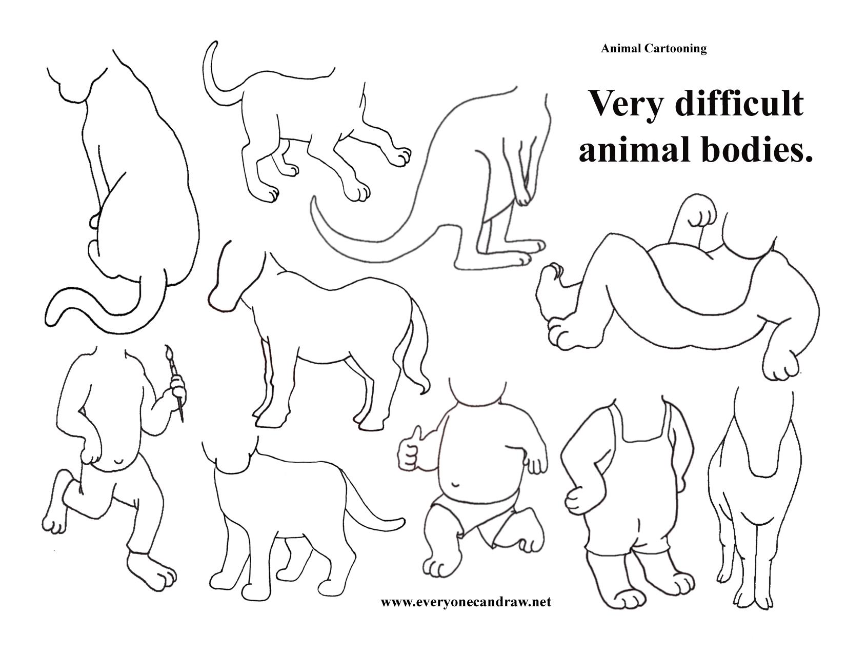 1650x1275 Animal Bodies