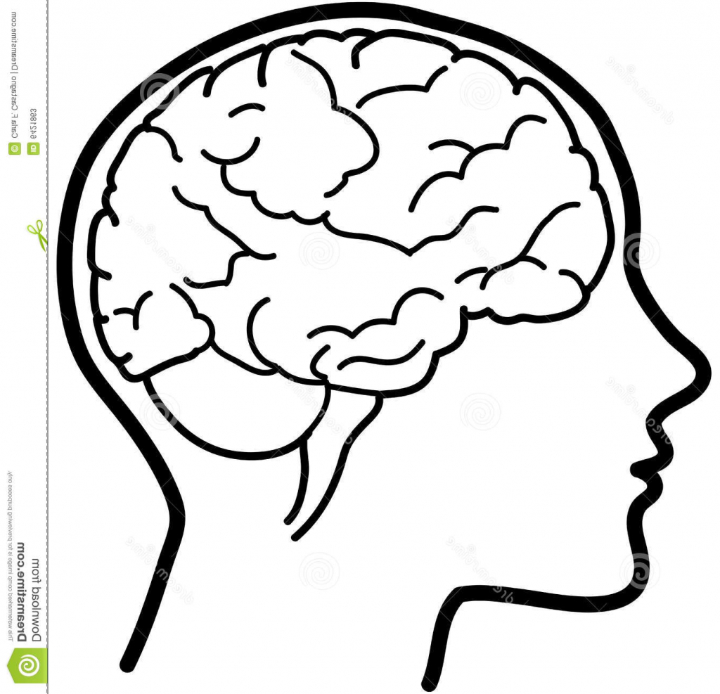1024x987 Cartoon Brain Drawing Simple Brain Drawing Index Of Images16
